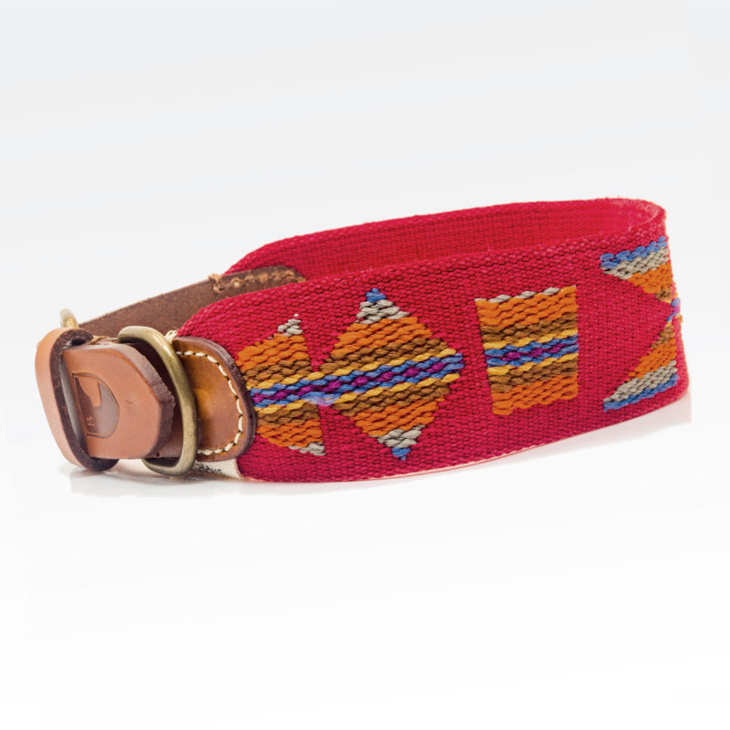 Buddys Hundehalsband Etna Rot 1