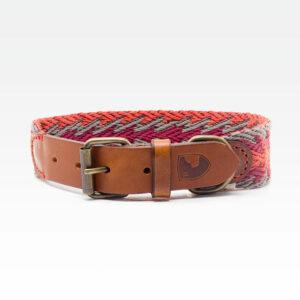 Buddys Hundehalsband Peruvian Arrow Orange 01