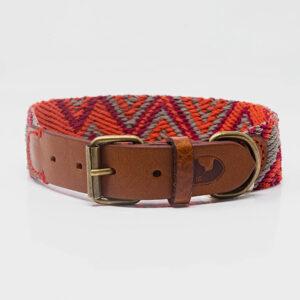 Buddys Hundehalsband Peruvian Pikes 01