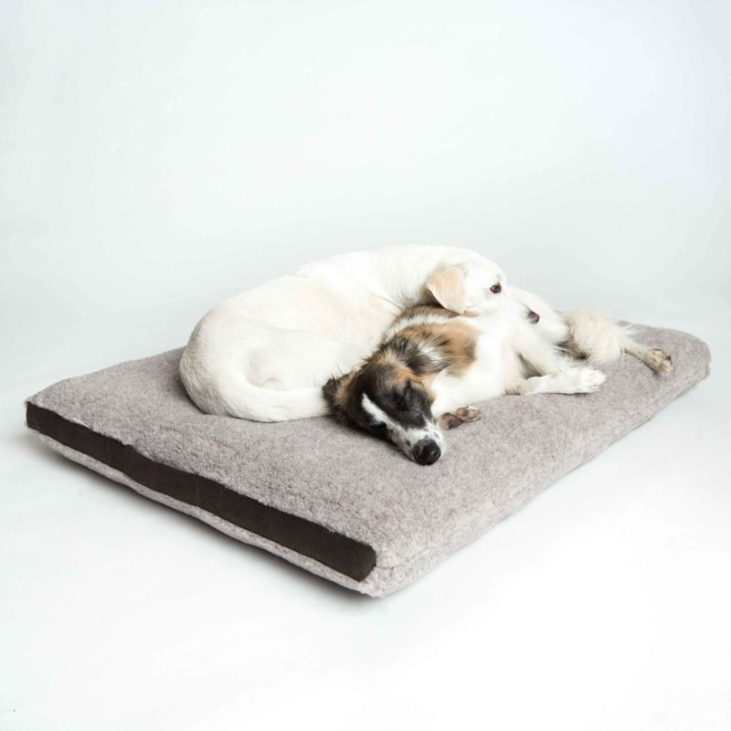 cloud7-hundebett-siesta-teddy_4