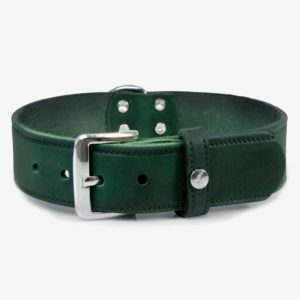 Das Lederband Hundehalsband Weinheim Hunting Green L