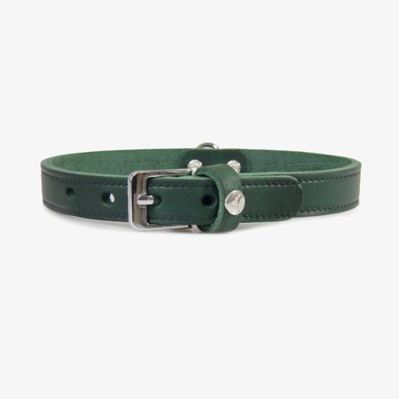 Das Lederband Hundehalsband Weinheim Hunting Green S