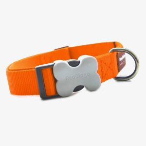 red-dingo-hundehalsband-uni-orange