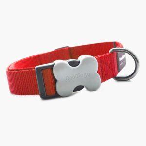 red-dingo-hundehalsband-uni-rot