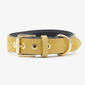 William Walker Hundehalsband Leder Midnight Sun LE 1