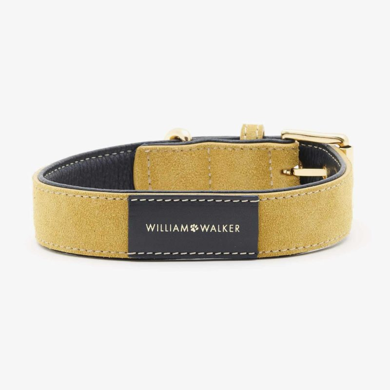 William Walker Hundehalsband Leder Midnight Sun LE 2