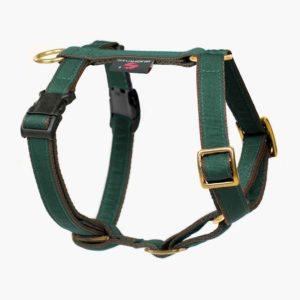 Suchtrupp Hundegeschirr Golden British Racing Green