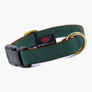 Suchtrupp Hundehalsband Golden British Racing Green