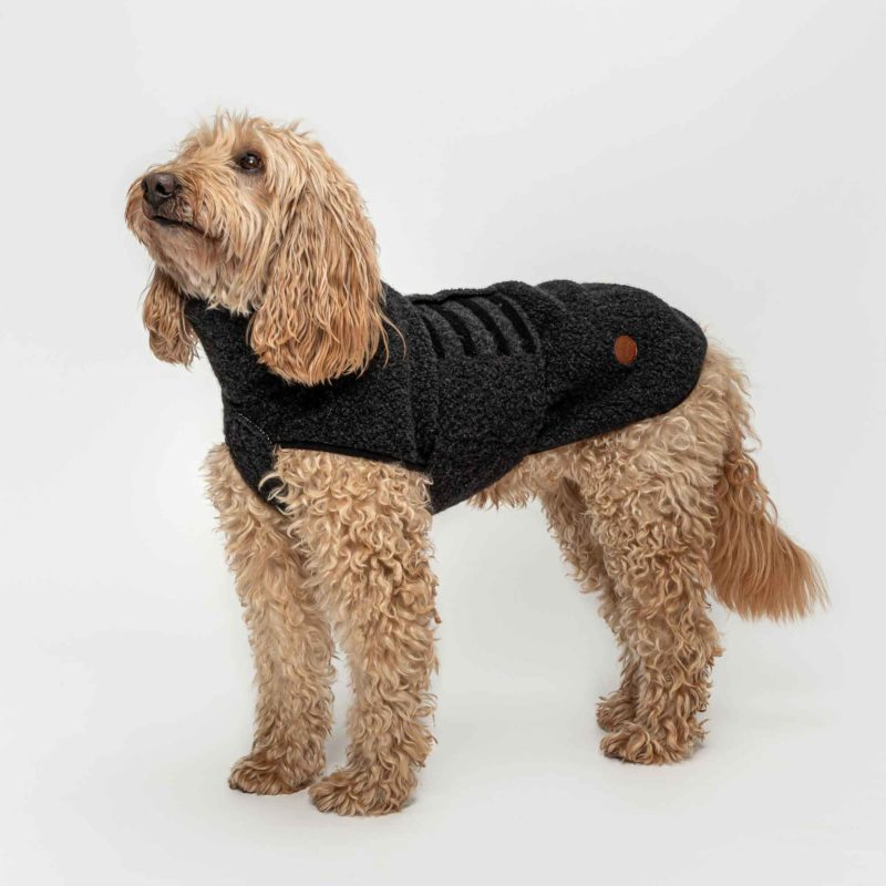 cloud7-hundepullover-derby-boucle-anthra_4